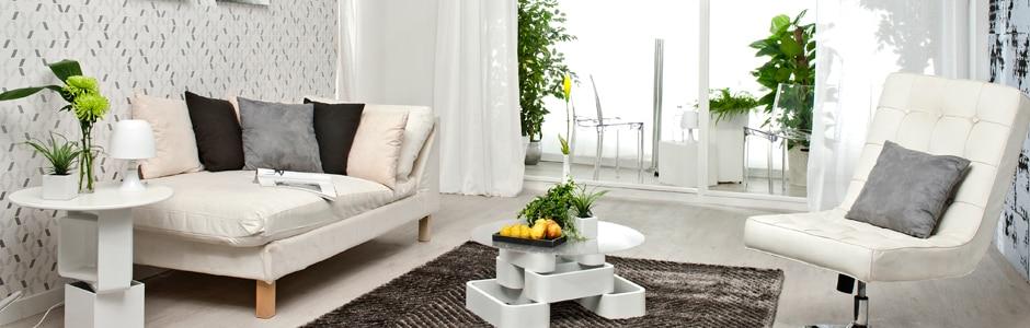 Especial plantas de interior leroy merlin for Plantas de interior muy duraderas