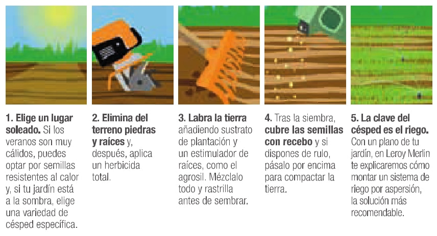 Tipos de cesped natural para jardin ideas de disenos for Cesped natural leroy merlin