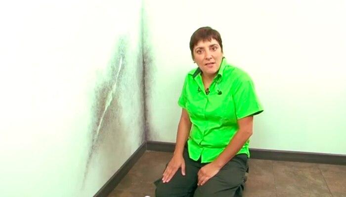 Reparar paredes leroy merlin hydraulic actuators - Alisar paredes leroy merlin ...