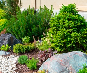 Las Tareas Del Jardín En Mayobr Leroy Merlin