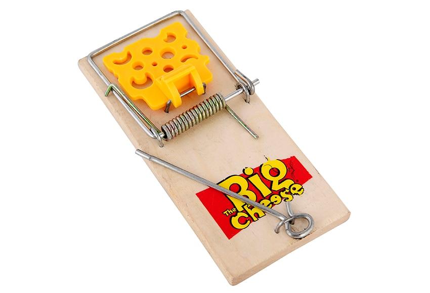 Pack de 2 cepos con cebo para ratones trampa ref 15966636 - Cepos para ratas ...