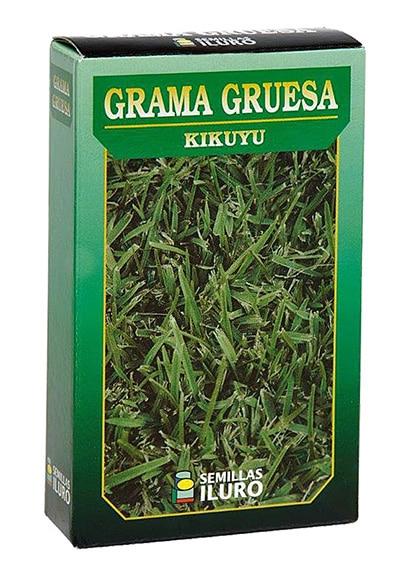 semillas de gramon