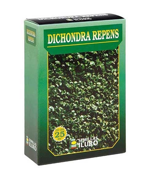 Semilla de c sped c sped dichondra repens ref 443450 for Semillas leroy merlin