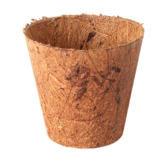 mini invernadero de plástico / macetas de fibra de coco