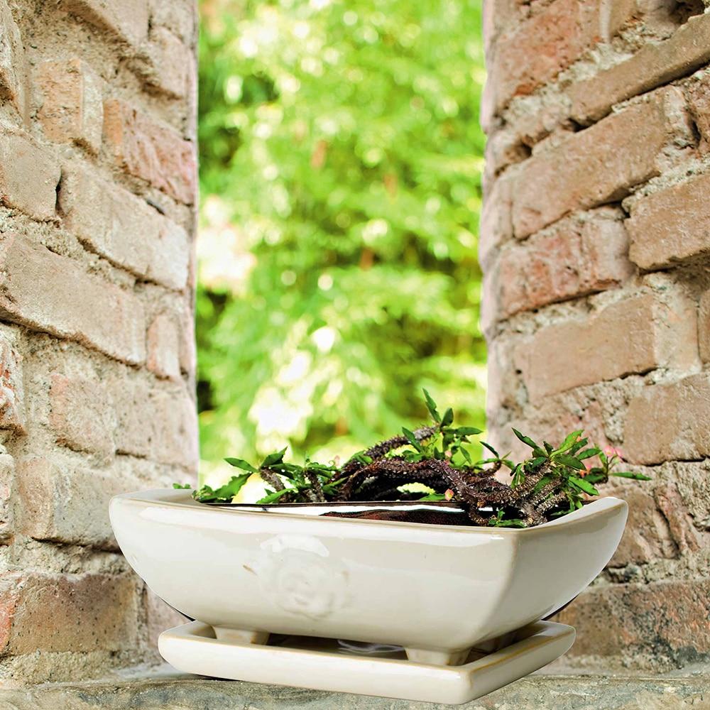 Maceta maceta de barro bonsai ref 14168196 leroy merlin - Leroy macetas ...