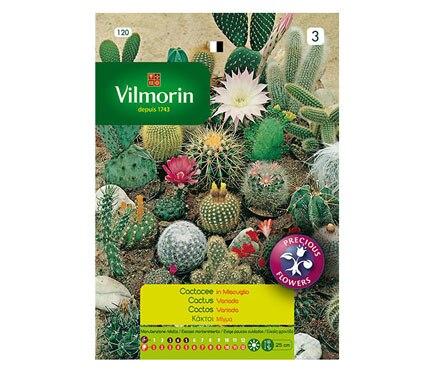 Semilla cactus variados ref 10663114 leroy merlin for Semillas leroy merlin