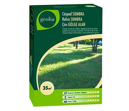 Semilla de c sped geolia c sped sombra geolia ref for Cesped natural leroy merlin