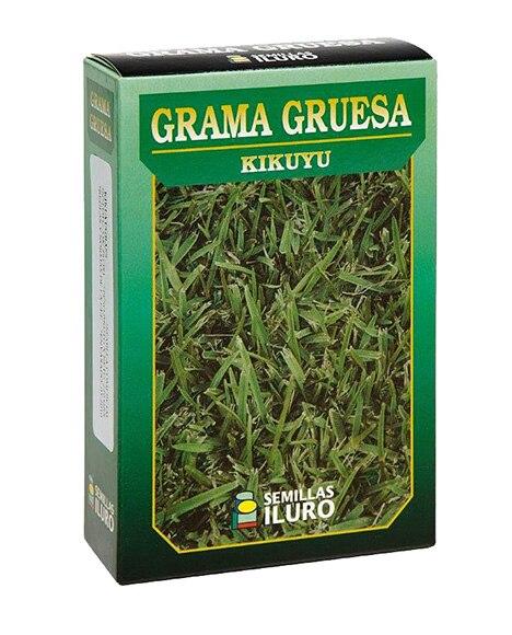 Semilla de c sped grama gruesa kikuyu ref 12775840 - Semillas de cesped para jardin ...