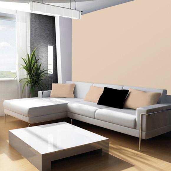 Pintura de color para paredes y techos tit n colors arena - Color arena pared ...