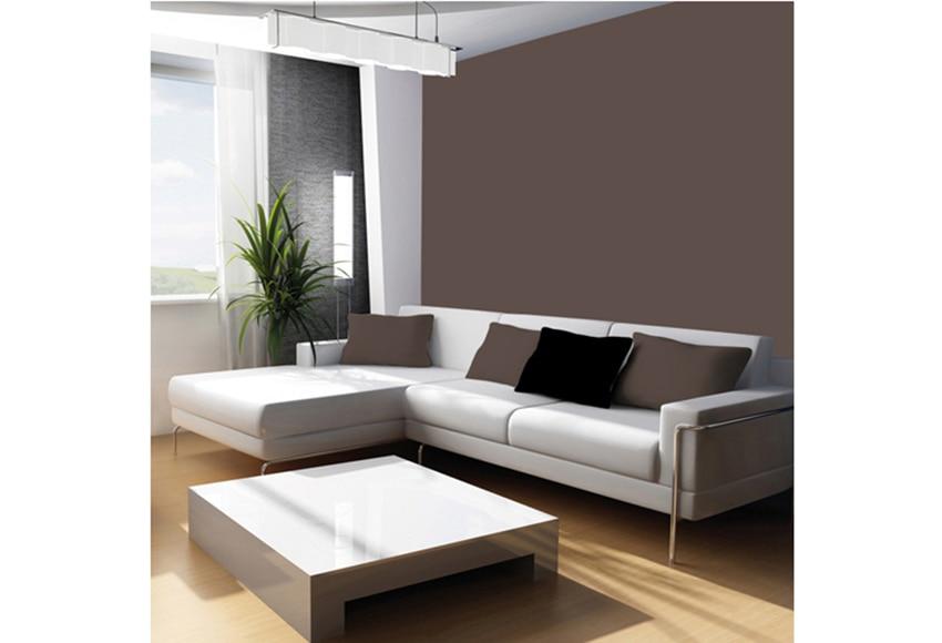 Pintura de color para paredes y techos tit n colors gris for Pintura color berenjena