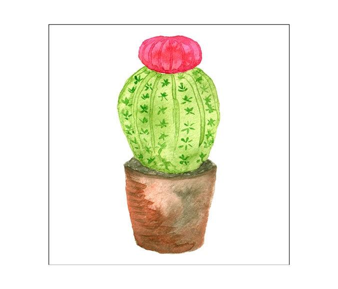 Set De 4 L Minas De 30 X 30 Cm Cactus Ref 19459475
