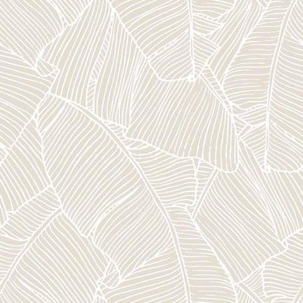 Papel pintado filodendro ref 17897516 leroy merlin for Papel termico antihumedad leroy merlin