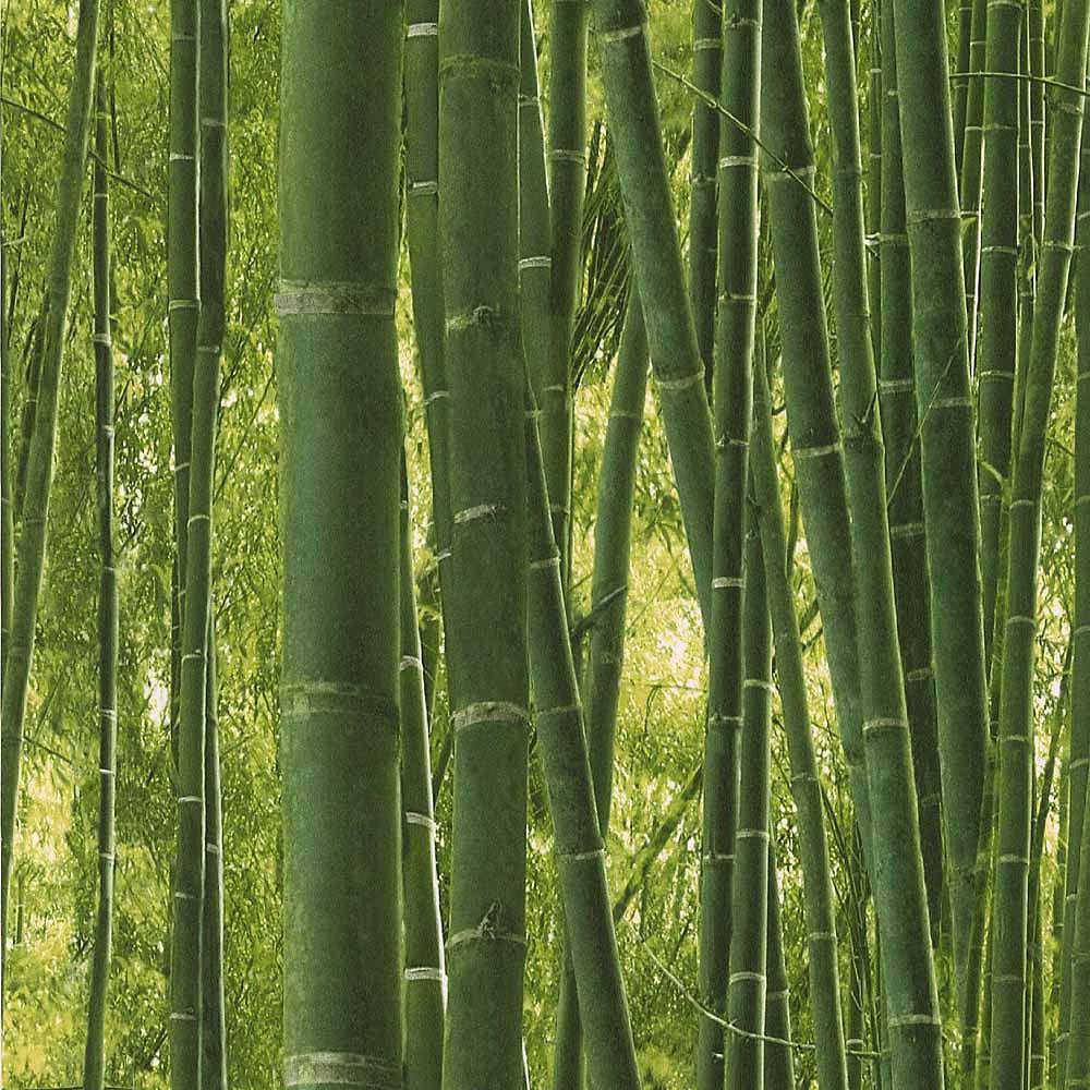 Papel pintado reality bambu ref 17140445 leroy merlin - Papel para pared leroy merlin ...