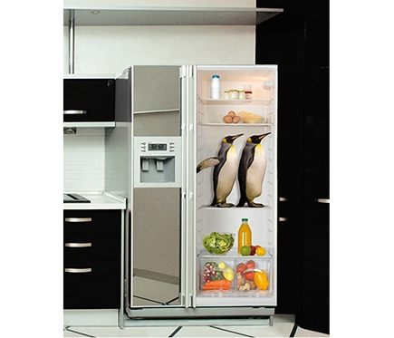 Vinilo para frigor fico vista interior ref 15060913 for Frigorificos leroy merlin