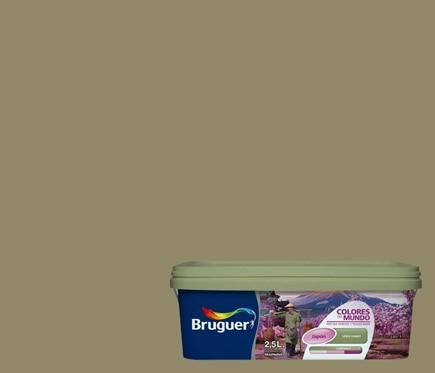 Pintura de color para paredes y techos bruguer colores del for Pintura pared verde