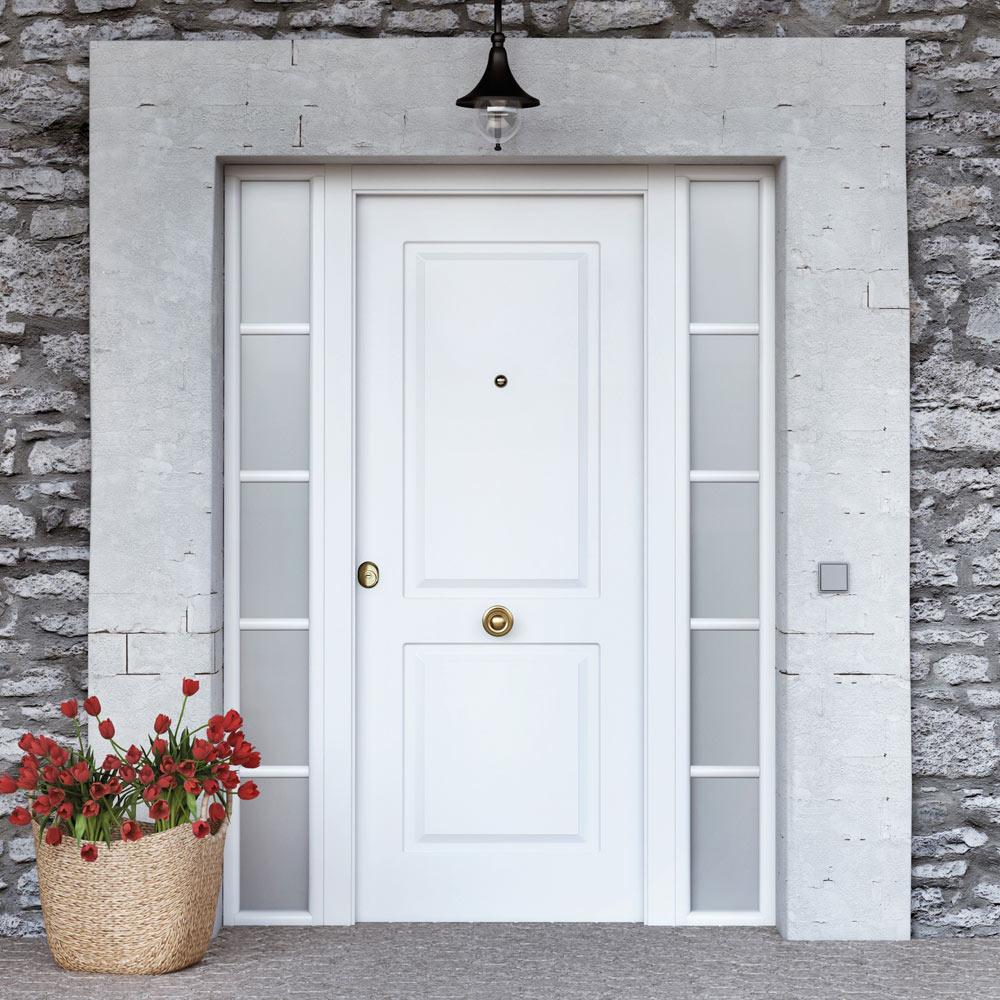 Puerta de entrada met lica met lica cl sica blanca ref - Mosquiteras para puertas leroy merlin ...