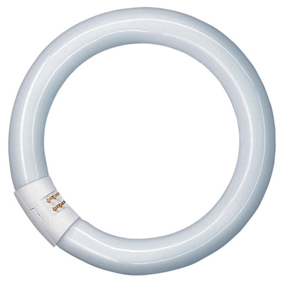 Tubo fluorescente osram tubo fluorescente circular g10q - Tubo fluorescente redondo ...