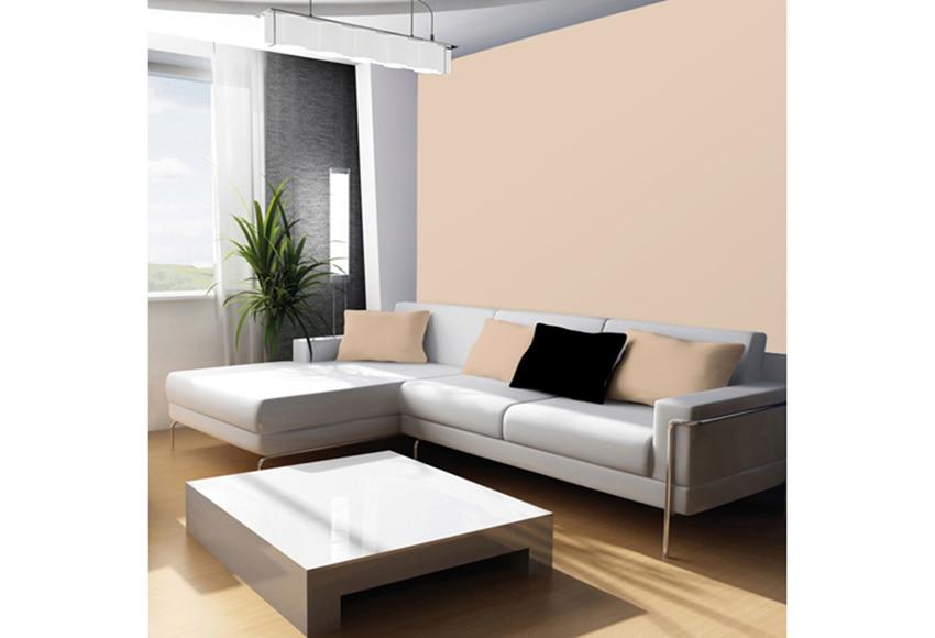 Pintura de color para paredes y techos tit n colors arena - Pintura color vainilla ...